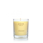 scented-candle-creme-brule